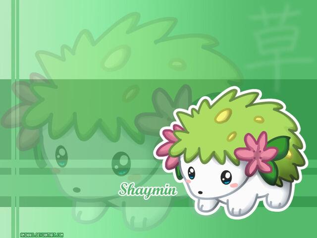 File:Pokemon wallpapers 36.jpg