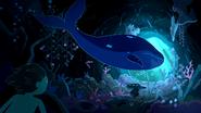 S5e52 whale swimming away