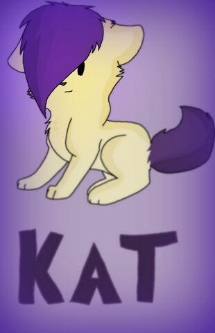 File:Kat (1).jpg