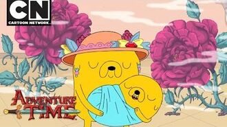 Adventure Time The Hole Is Gone Cartoon Network