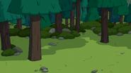 S7e4 close forest