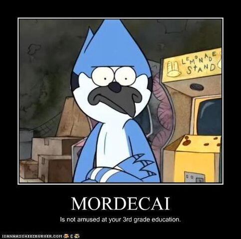 File:Lol mordecai hates idiots.jpg