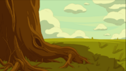 Roots, tree