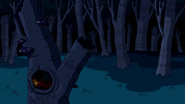 S7e35 Forest shot 2