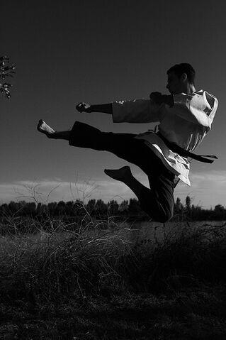 File:Flying Sidekick - yoko tobi geri.jpg