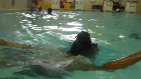 SDA17 - Swim & Water Polo - Mia