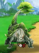 Forest Tortoise
