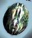 File:Obsidian Wyvern Egg.png