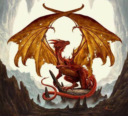 Dragon-Outcast