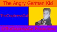 WALLPTheCrazinessCat