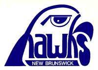 Nbhawk79