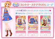 Country Scarecrow Coord news05