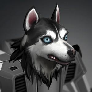 Husky Head