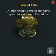 Tree of Life Temp