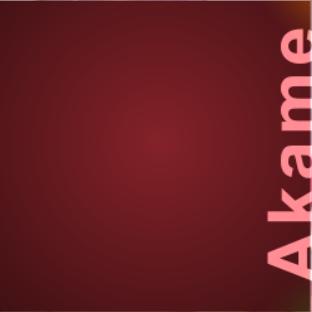 File:Akame portal 2.png