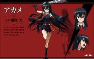 Character Akame