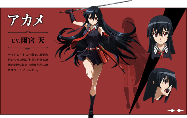 File:Character Akame.png