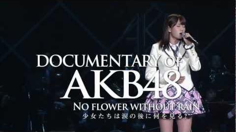 特報 5 DOCUMENTARY OF AKB48 NO FLOWER WITHOUT RAIN AKB48 公式