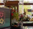 Mae's Flowers