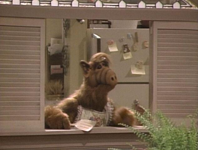 File:791px-Alf-Episode-002.jpg