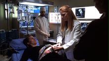 Alias Sydney Pregnant