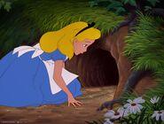 Alice-disneyscreencaps.com-424