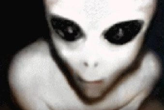 File:A-grey-alien-3489.jpg