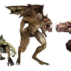 Illustrating five different types (Canine, Reptile, Bat, Bird, Hybrid)
