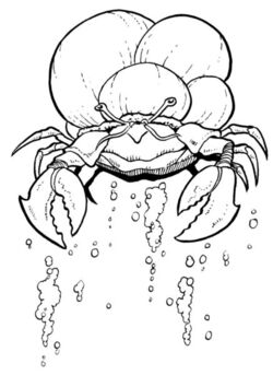 Sink Crab