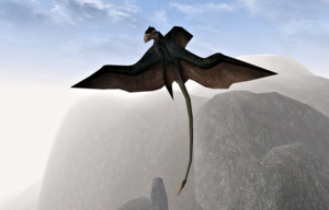 Cliff Racer (Morrowind)