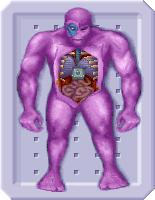 Mutonautopsy