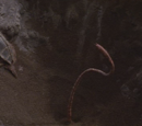 Fyrine IV pit fiend