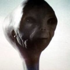 A Grey from <i>Close Encounters of the Third Kind</i>.