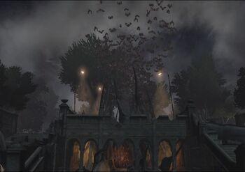 Vampirez Nest