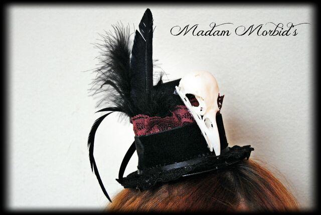 File:Madam Morbid Gothic Victorian Real Crow Skull Lace Mini Top Hat 4.JPG