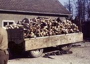 220px-Buchenwald Corpses 60623
