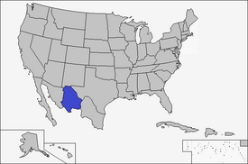 Location of Chihuahua (Coin Toss)