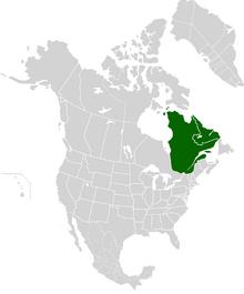 AMP Map of Canadian Republic VIII