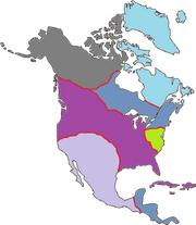 Romae Occidentali
