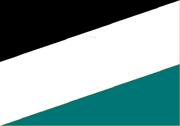 FlagofTyumen(LR)