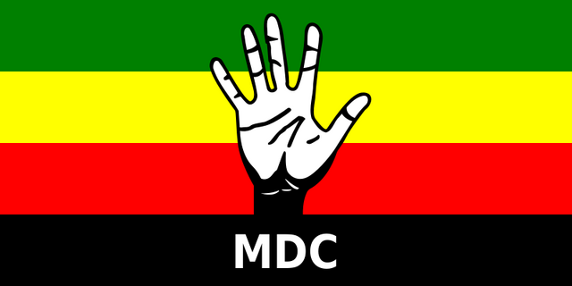File:Flag of the Movement for Democratic Change.png
