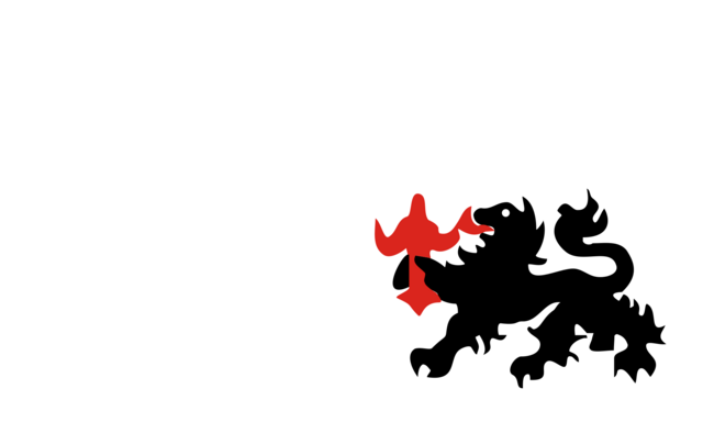 File:Flag of Non German new guinea.png
