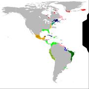 1536 - Americas