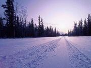 Snow-in-road-wallpaper