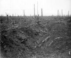 German trench Delville Wood September 1916 SOMME