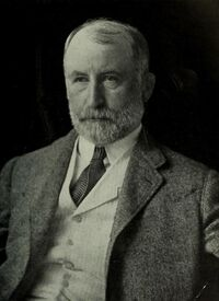Portrait of William Jay Gaynor