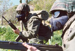 Scandinavian Soldiers WWIII
