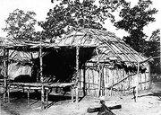 Ancient Wickiup