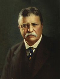 1-theodore-roosevelt--president-of-the-united-states-international-images