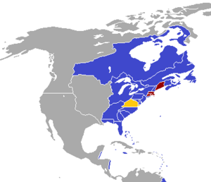 New England Crisis (Borgo)